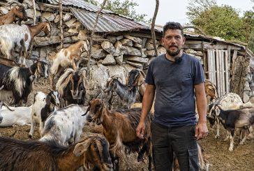 Βίντεο: εγκατέλειψε την Αθήνα για να γίνει κτηνοτρόφος στο χωριό – λόγια που συγκινούν!