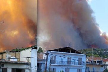 Μεγάλη φωτιά στην Αχαΐα: Κάηκαν σπίτια στη Ζήρια – Κλειστή η Εθνική Οδός