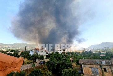 Φωτιά στην Πάτρα: Στις φλόγες Σούλι, Ελεκίστρα και Εγλυκάδα – Κάηκαν σπίτια, εκκενώνονται οικισμοί