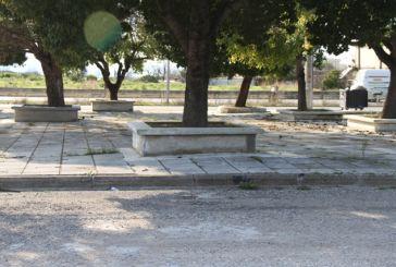 Τσιμεντωμένα δέντρα: Μια καινοτομία στο Αγρίνιο