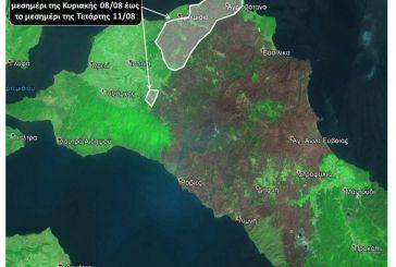 Φωτιά στην Εύβοια: Νέες εικόνες από δορυφόρο – Έγιναν στάχτη πάνω από 510.000 στρέμματα