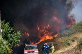 Ελεγχόμενη η φωτιά σε Θύρρειο-Δρυμό, ευχαριστίες δημάρχου