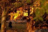 Φωτιά στην Αχαΐα: Ολονύχτια μάχη με τις φλόγες -20 σπίτια καμένα, 16 τραυματίες