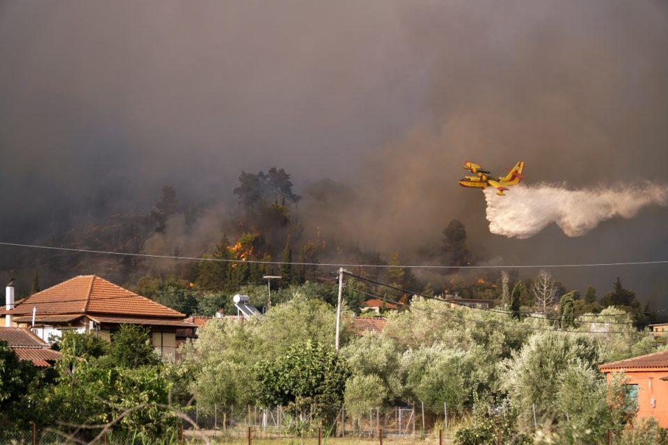 Χαρδαλιάς για φωτιές: επτά πύρινα μέτωπα ταυτόχρονα στην Ηλεία – Τώρα έρχονται τα δύσκολα