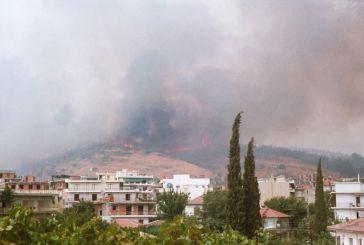 Όταν η φωτιά είχε πλησιάσει επικίνδυνα το Αγρίνιο