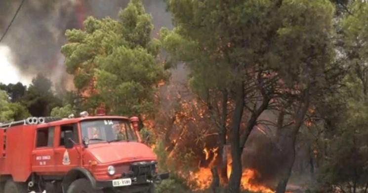 ΓΕΩΤ.Ε.Ε.: πολιτικές και δράσεις για τις δασικές πυρκαγιές
