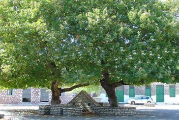 Κωνωπίνα: Αποκαλυπτήρια Μνημείου Ηρώων και Αγωνιστών του 1821 την Τρίτη 17 Αυγούστου