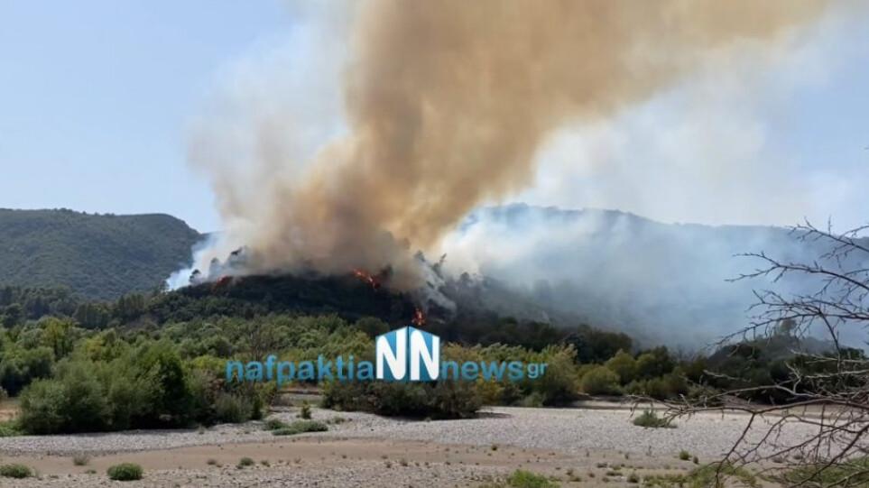 Αναζωπύρωση της φωτιάς στο Παραδείσι (βίντεο)