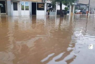 Αγρίνιο: Για τα νερά στην Πεταλούδα φταίει η έλλειψη φρεατίων στην Φιλελλήνων και την ευρύτερη περιοχή