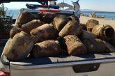 Εντόπισε 290 παράνομες ιχθυοπαγίδες το Λιμεναρχείο Μεσολογγίου στο Κρυονέρι(φωτο)