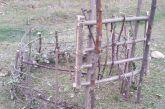 «Κάτι πρέπει να γίνει με τις παγίδες για τα αγριογούρουνα στα χωριά»