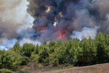 Μαίνεται μεγάλη πυρκαγιά στον Ασπριά Ναυπακτίας- Κίνδυνος για κατοικίες