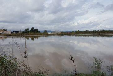 Σε… λίμνη μετατράπηκαν τα χωράφια στον Πλάτανο Καλυβίων